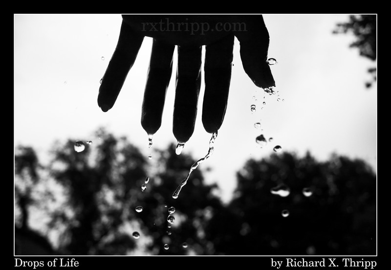 Black And White Rain Photography. lack and white effect I